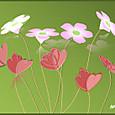 花カタバミ